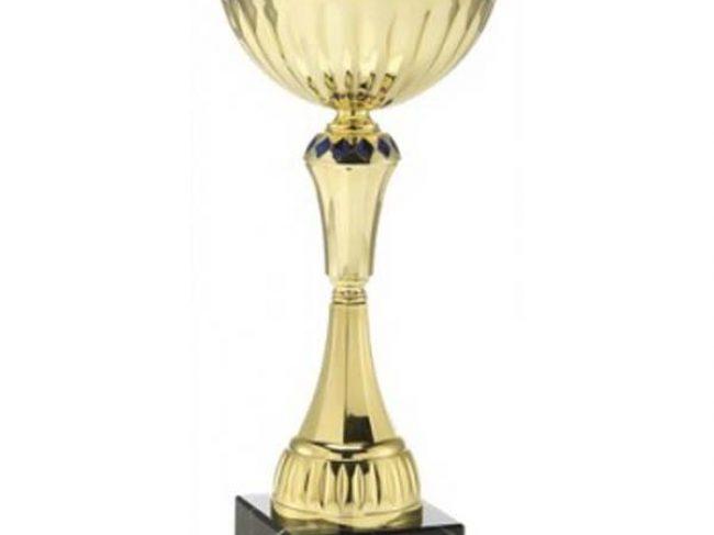 BRAUN® – Sportovní poháry