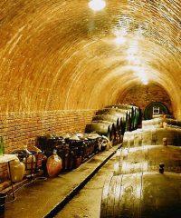 Bylinková a přírodní vína Karel Světlík